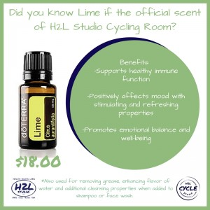 essential oils for sale in mechanicsburg flyer